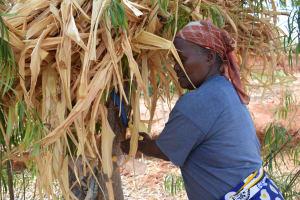 The Water Project: Katalwa Community A -  Handwashing