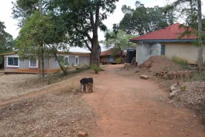 The Water Project: Mitini Community C -  Household