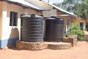 The Water Project: Kitooni Primary School -  Unprotected Plastic Rainwater Tanks