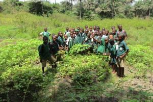 The Water Project: DEC Komrabai Primary School -  Students In School Garden