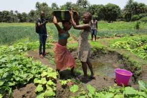 The Water Project: Moniya Community -  Carrying Water