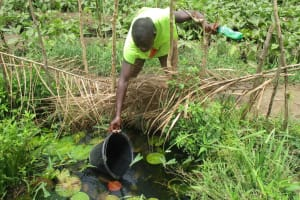 The Water Project: Modia Community, 63 Spur Road -  Open Water Source