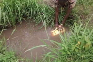 The Water Project: Kyamudikya Community -  Collecting Water