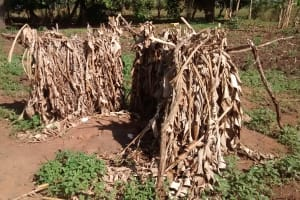 The Water Project: Alimugonza Community -  Improvised Latrine