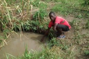 The Water Project: Katugo Community A -  Collecting Water From Dirty Open Source