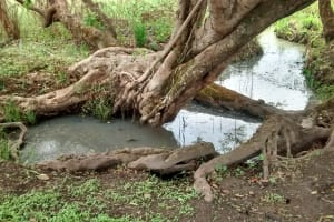 The Water Project: Hamis Water Source Pakanyi Community -  Dirty Water