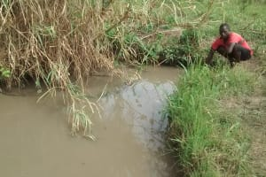 The Water Project: Katugo Community -  Collecting Water