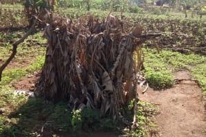 The Water Project: Alimugonza Community B -  Improvized Latrine