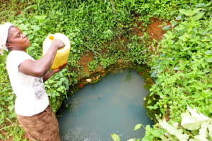 The Water Project: Handidi Community, Chisembe Spring -  Chisembe Spring
