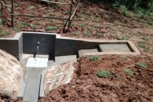 The Water Project: Jivovoli Community, Gideon Asonga Spring -  Safe Water Flows From Protected Spring