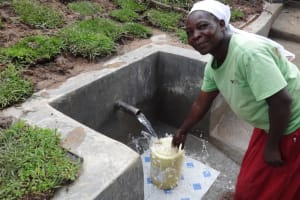 The Water Project: Ingavira Community, Laban Mwanzo Spring -  Collecting Clean Water