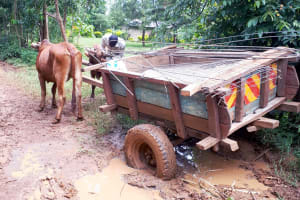 The Water Project: Mbande Community, Handa Spring -  Bad Roads On The Way To The Spring