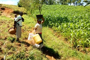 The Water Project: Emulakha Community, Alukoye Spring -  Women Delivering Materials To The Artisan