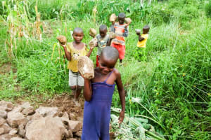 The Water Project: Mwituwa Community, Nanjira Spring -  Bringing Rocks To The Spring Protection Construction