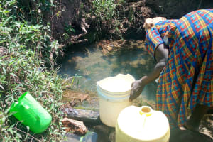 The Water Project: Ivinzo Commuity, Mushianda Spring -  Unprotected Spring