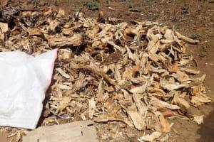 The Water Project: Shitirira Community, Peninah Spring -  Firewood Drying