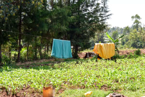 The Water Project: Mungakha Community, Nyanje Spring -  Clothesline