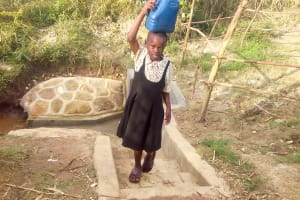 The Water Project: Luvambo Community, Tindi Spring -  Protected Spring