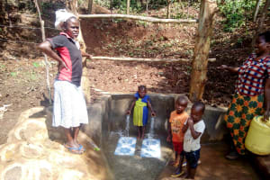 The Water Project: Irumbi Community, Okang'a Spring -  Protected Spring