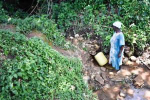 The Water Project: Mungakha Community, Asena Spring -  Josephine Fetching Water