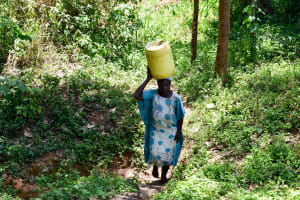 The Water Project: Mungakha Community, Asena Spring -  Carrying Water