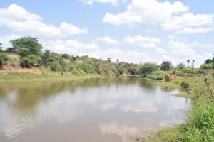 The Water Project: Mbuuni Community -  Water Collects Thanks To The Dam
