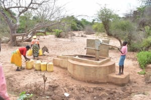 The Water Project: Ikulya Community -  Pumping Well