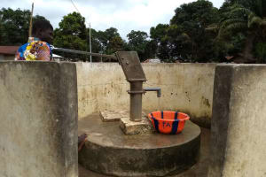 The Water Project: Conakry Dee Community A -  Previous Monitoring Visit