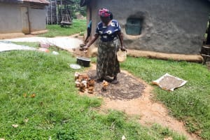 The Water Project: Luyeshe Community, Matolo Spring -  Bilha Feeding Her Chicks