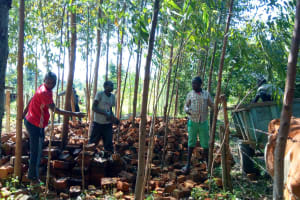 The Water Project: Luvambo Community, Timona Spring -  Getting Bricks For The Spring