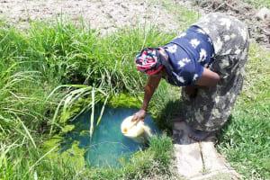 The Water Project: Luyeshe Community, Matolo Spring -  Bilha Fetching Water