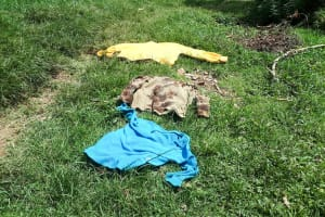 The Water Project: Luyeshe Community, Matolo Spring -  Clothes Drying