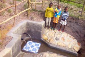 The Water Project: Chebwayi B Community, Wambutsi Spring -  Flowing Water