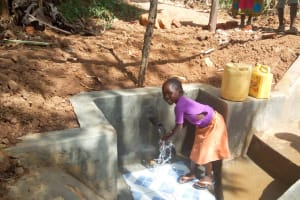 The Water Project: Musiachi Community, Thomas Spring -  Flowing Water