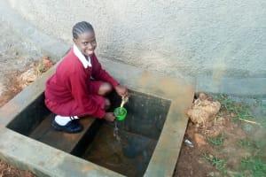 The Water Project: Shikhondi Girls Secondary School -  Finished Rainwater Tank