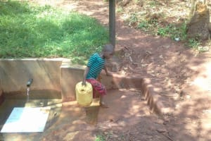 The Water Project: Wanzuma Community, Wanzuma Spring -  Returning Home With Safe Water