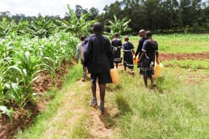 The Water Project: Shikusa Primary School -  Going To Fetch Water