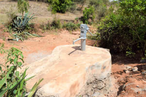 The Water Project: Mbakoni Community A -  Finished Well