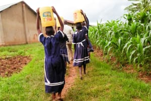 The Water Project: Shikusa Primary School -  Carrying Water To School