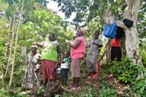 The Water Project: Ewamakhumbi Community, Yanga Spring -  Talking About The Spring Protection