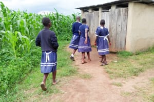 The Water Project: Shikusa Primary School -  Girls Latrines