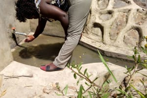 The Water Project: Mwiyala Community, Benard Spring -  Reliable Water