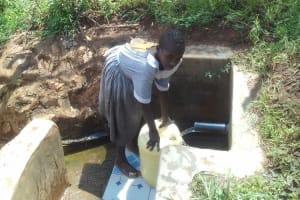 The Water Project: Ebuhando Community, Christopher Omasaba Spring -  Sheila Praise