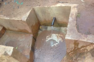 The Water Project: Lugango Community, Lugango Spring -  Lugango Spring