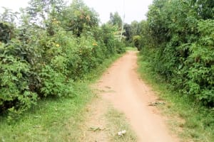 The Water Project: Musango Community, Ndalusia Spring -  Road Leading Into The Community
