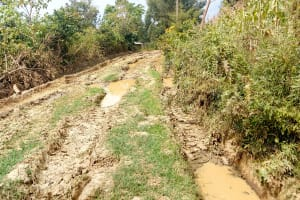 The Water Project: Lukova Community, Wasike Spring -  Road Into Community