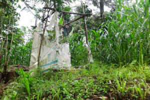 The Water Project: Ilala Community, Arnold Johnny Spring -  Latrine