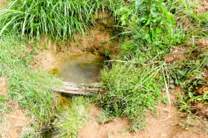 The Water Project: Emulakha Community, Nalianya Spring -  Current Water Source