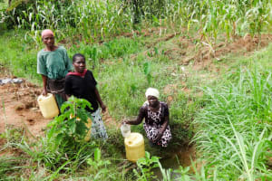 The Water Project: Emulakha Community, Nalianya Spring -  Fetching Water