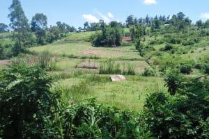 The Water Project: Mukoko Community, Mukoko Spring -  Beautiful Community Landscape